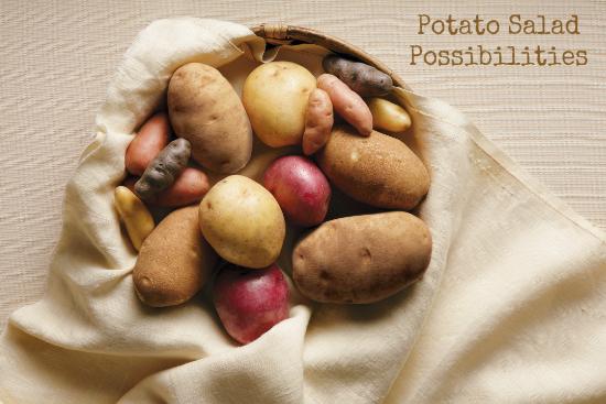 Potato Salad Possibilities