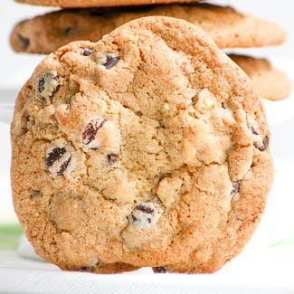 Jumbo Chocolate Chip Walnut Cookies in The Cookie Jar