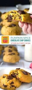 Pumpkin Spice Chocolate Chip Cookies on Pinterest