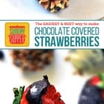 Chocolate Ganache Covered Strawberries on Pinterest