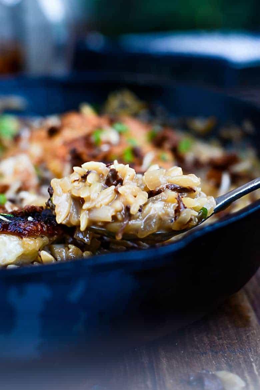 One Pan Chicken and Wild Mushroom Orzo