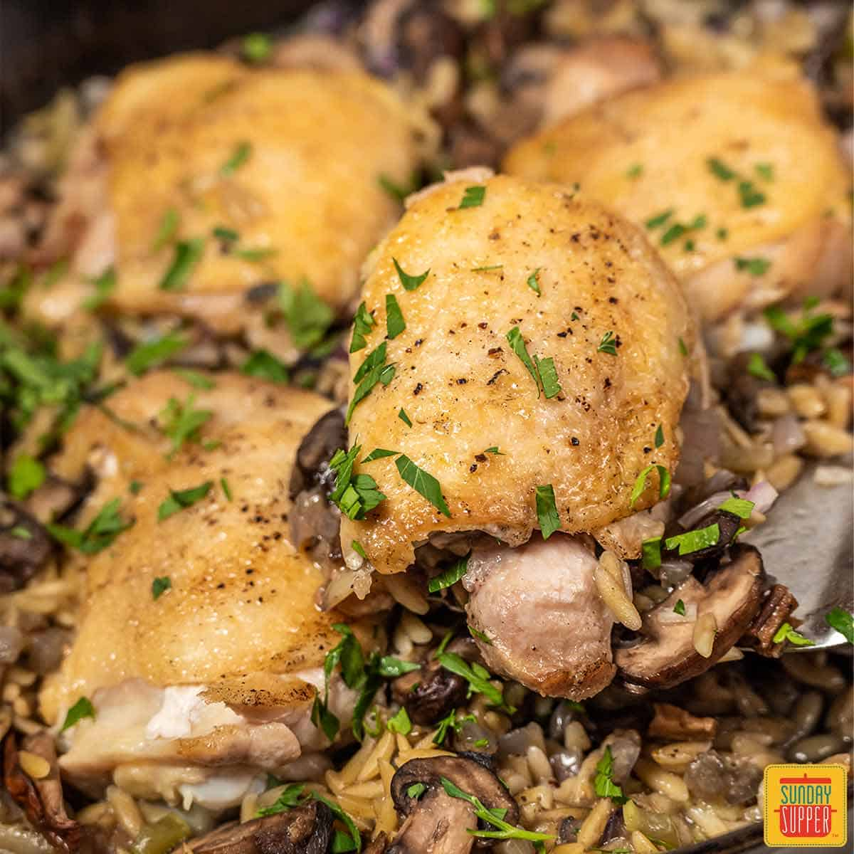 lifting chicken out of pot of orzo close up