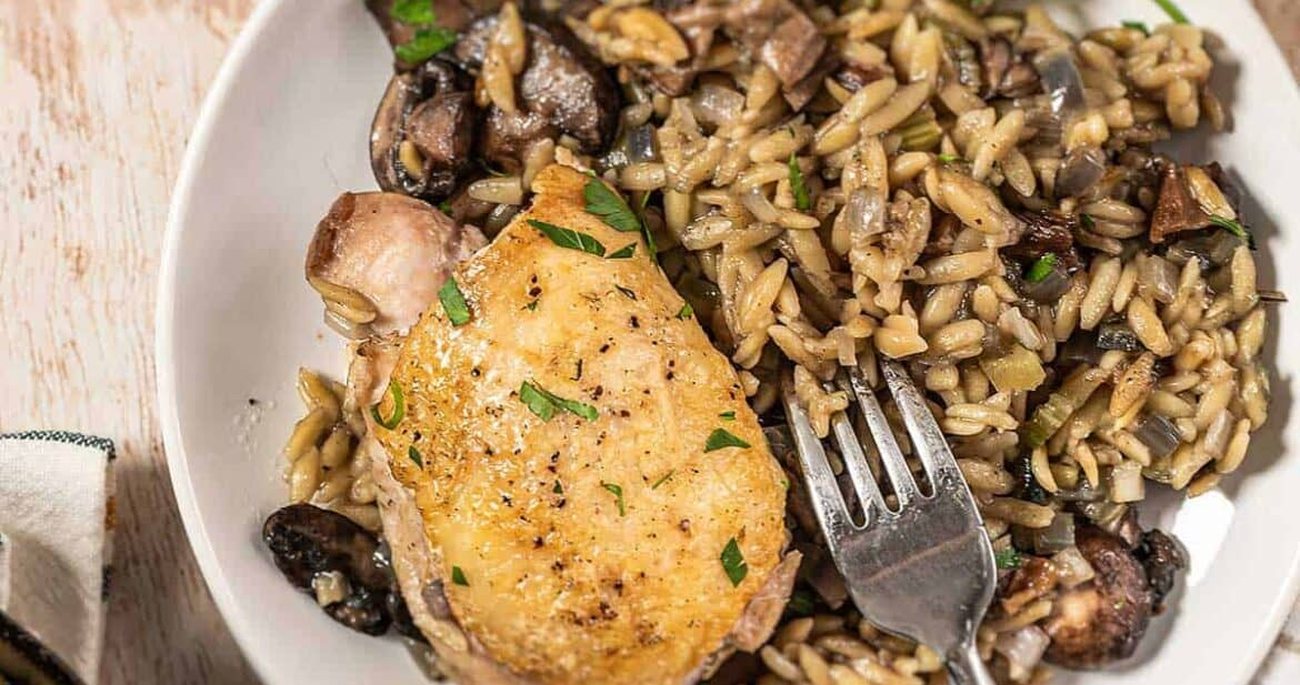 chicken and orzo pasta on a white plate with a fork
