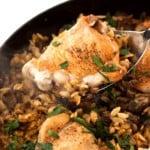 One Pot Chicken Orzo Pasta on Pinterest