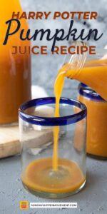 Save Harry Potter Pumpkin Juice on Pinterest for later!