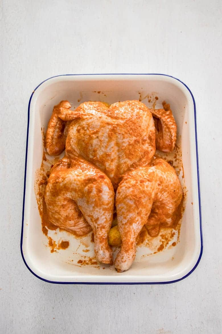 Peri Peri Chicken Recipe - whole chicken in roasting pan, basted and ready to roast