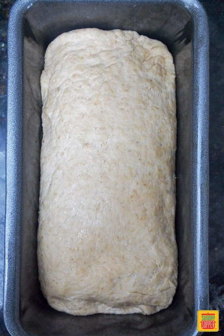 Sprouted bread rising in loaf pan