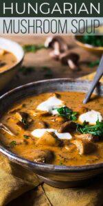 Save Hungarian Mushroom Soup on Pinterest