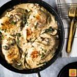 chicken breast and mushroom recipe