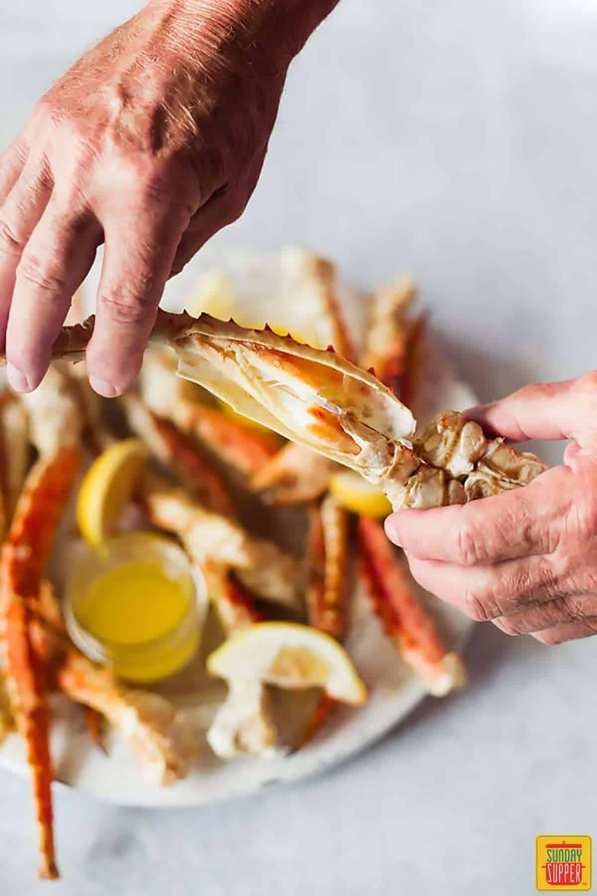 Breaking open a steamed crab leg with hands