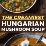 Hungarian Mushroom Soup pin image