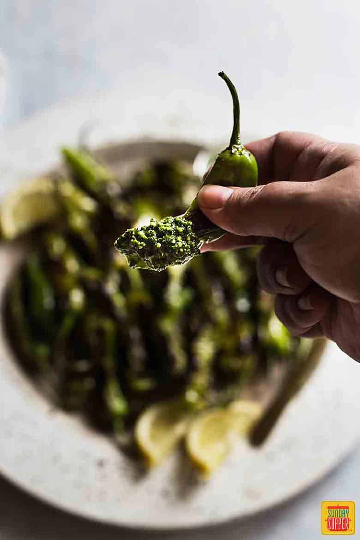 Holding up a charred shishito pepper dipped in citrus pesto dip