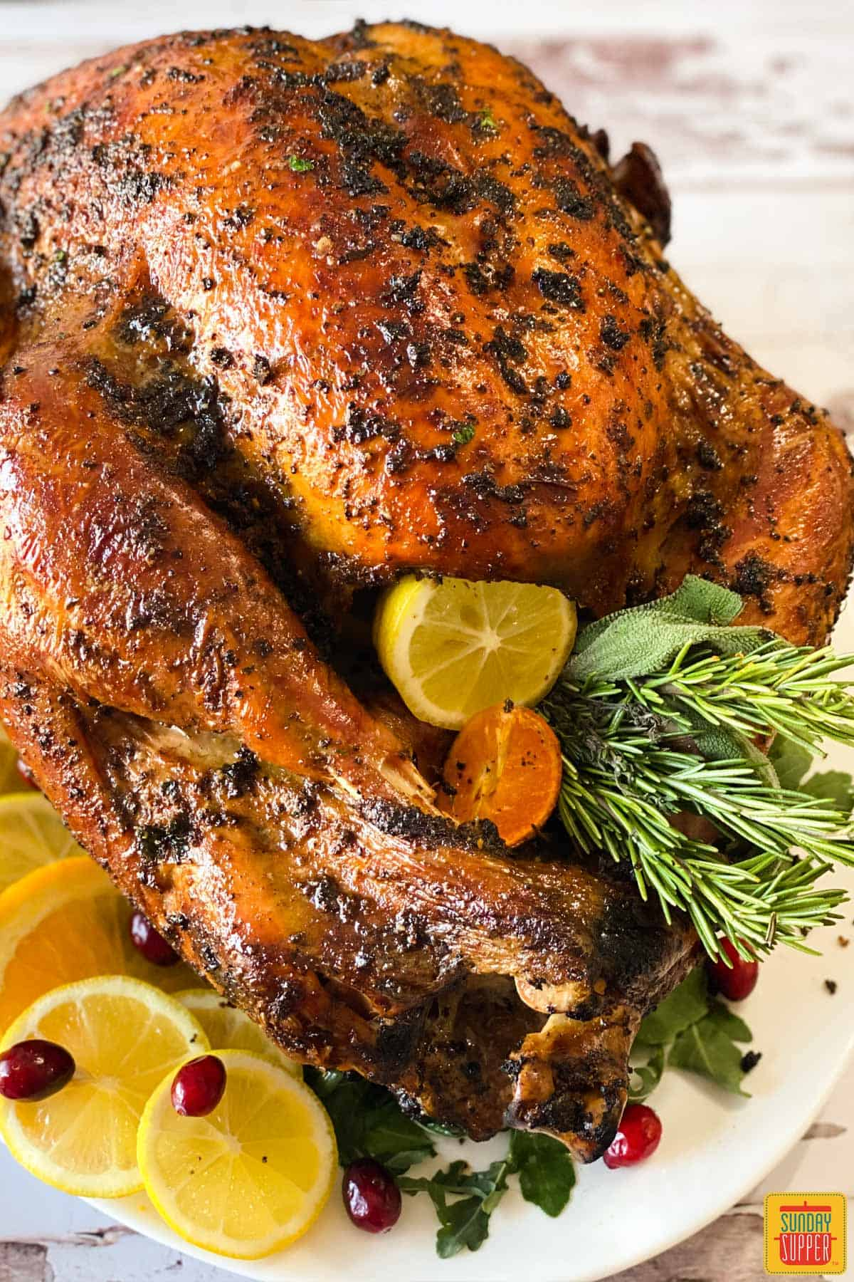 Close up of grilled turkey on a platter with citrus, herbs, and cranberries